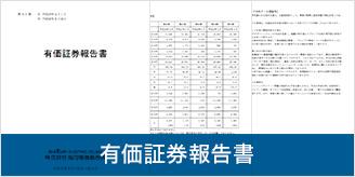 有価証券報告書